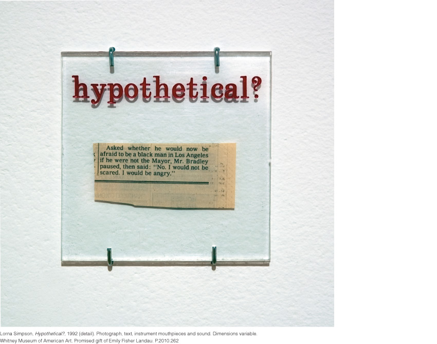 Lorna Simpson, Hypothetical?, 1992 (detail)